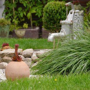Małe ogrody – co do nich wybrać?