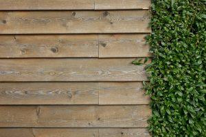 Wybór ogrodzenia na posesję
