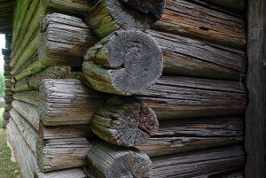 Jakie domki z drewna proponują producenci?