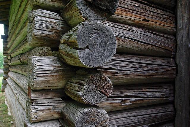 producenci domków z drewna